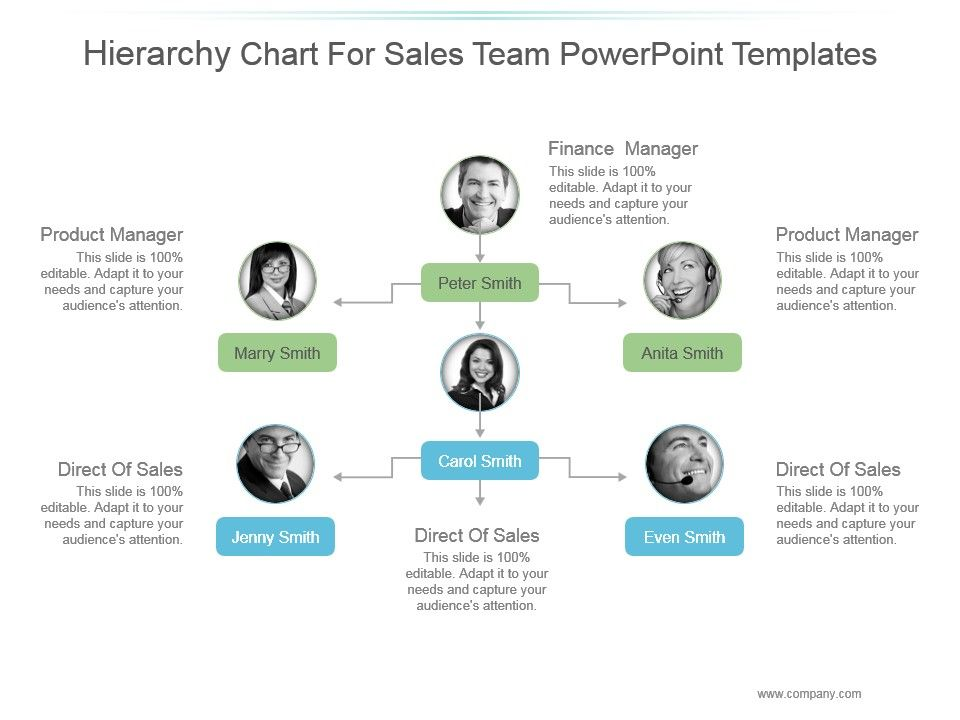 sales team structure template - 34681015 style hierarchy 1 many 6 piece powerpoint