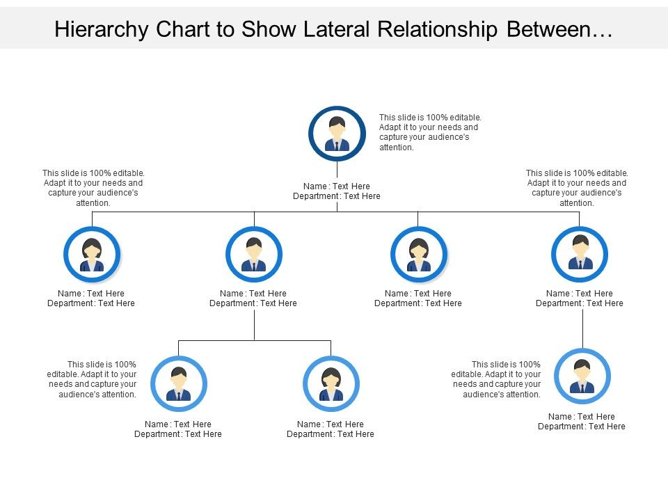 hierarchy_chart_to_show_lateral_relationship_between_departments_positions_or_organisation_roles_Slide01
