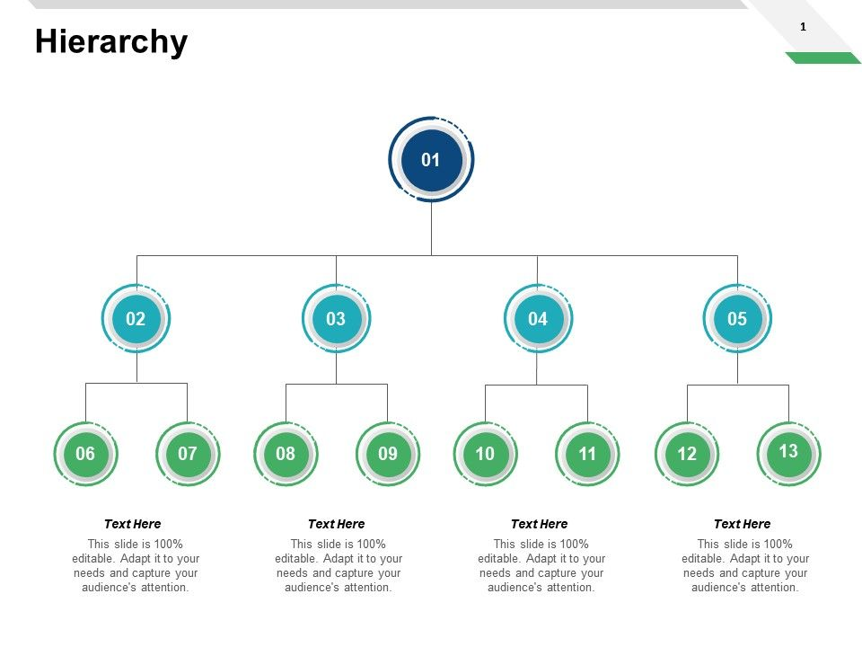 Hierarchy Process Ppt Powerpoint Presentation Pictures Design Ideas
