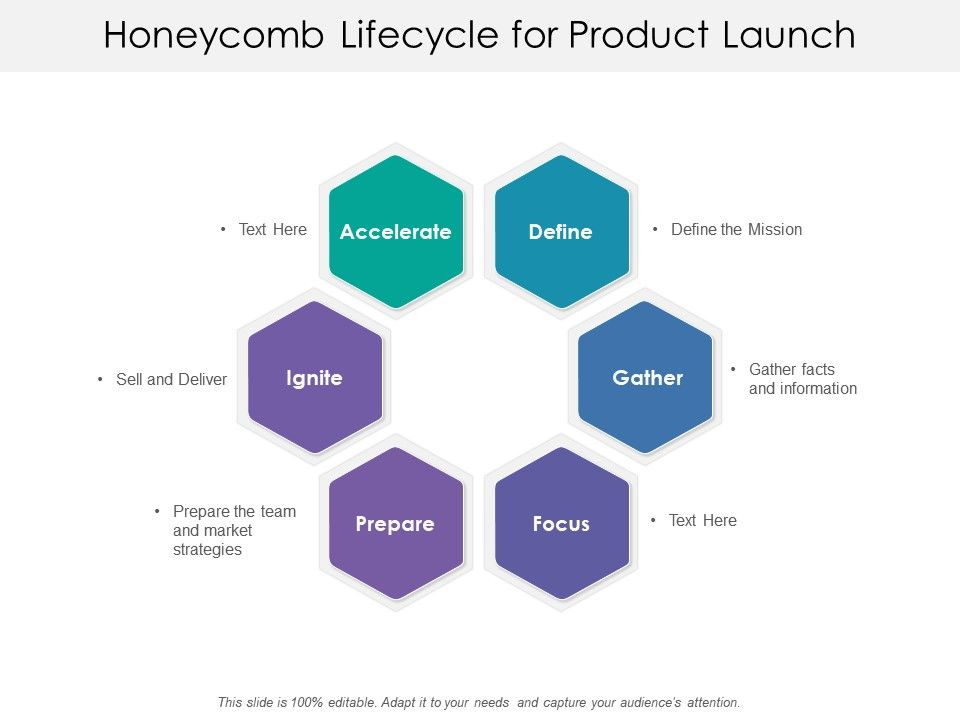 honeycomb_lifecycle_for_product_launch_Slide01