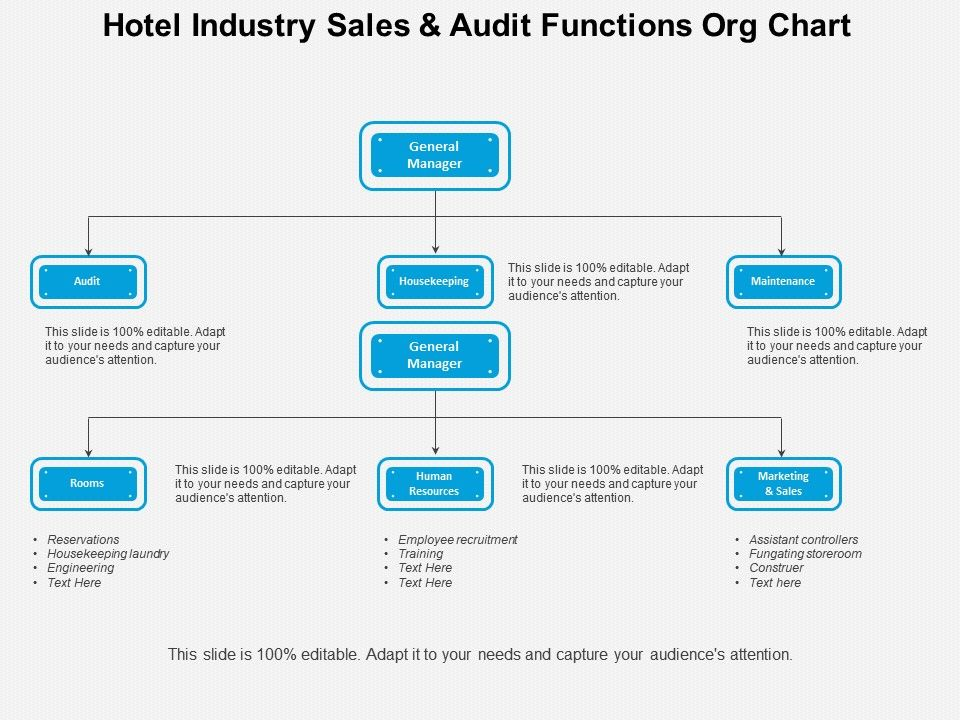 Hotel Industry Sales And Audit Functions Org Chart