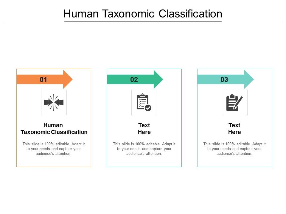 Human Taxonomic Classification Ppt Powerpoint Presentation Layouts Microsoft Cpb