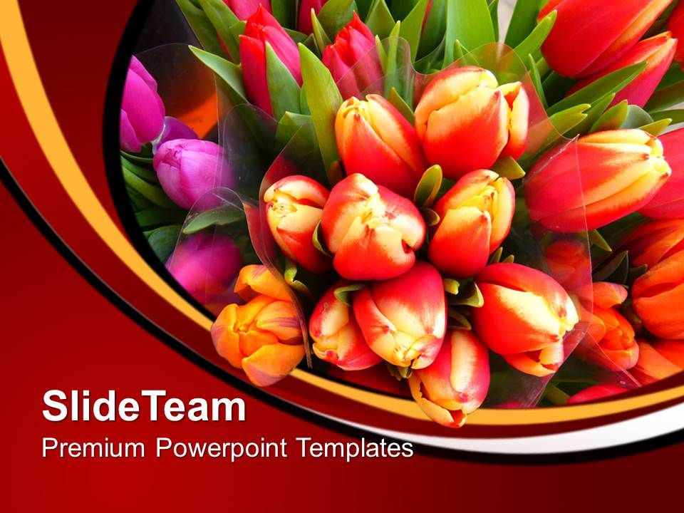 Image Of Colorful Tulips Flowers Powerpoint Templates Ppt