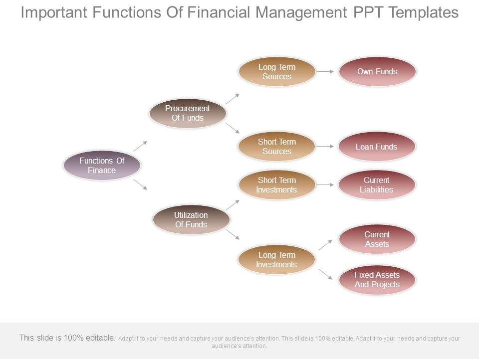 important_functions_of_financial_management_ppt_templates_Slide01