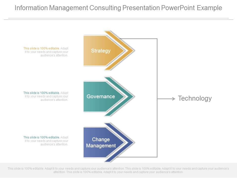 Information Management Consulting Presentation Powerpoint Example