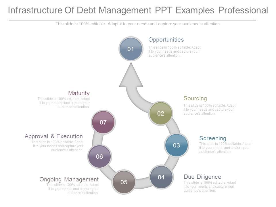 infrastructure_of_debt_management_ppt_examples_professional_Slide01