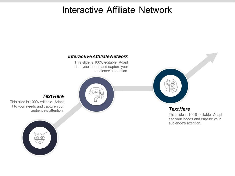 Interactive Affiliate Network Ppt Powerpoint Presentation Icon