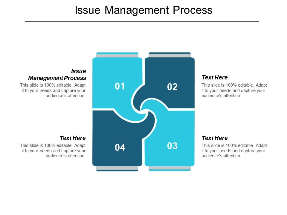 Issue Management Process Ppt Powerpoint Presentation File