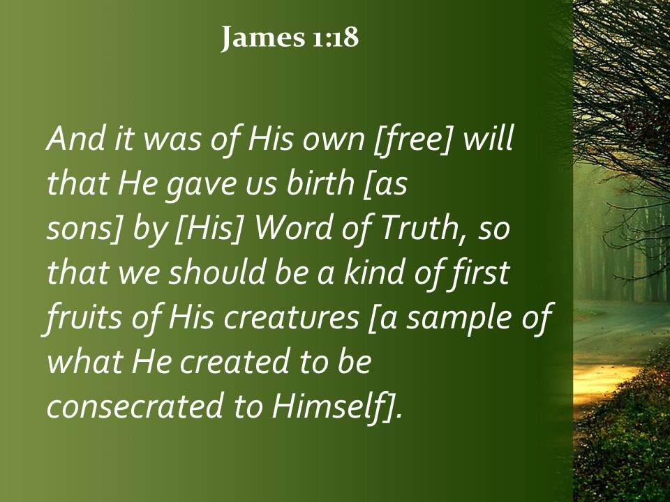 james 1 18 a kind of first fruits powerpoint church sermon