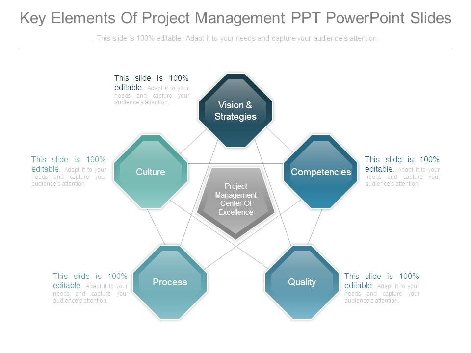 Key Elements Of Project Management Ppt Powerpoint Slides