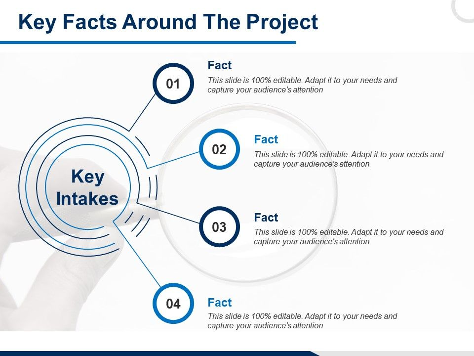 Key Facts Around The Project Audiences Attention Ppt Powerpoint Presentation File Rules
