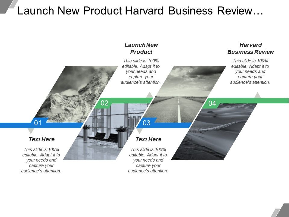 launch_new_product_harvard_business_review_supplier_alliance_Slide01