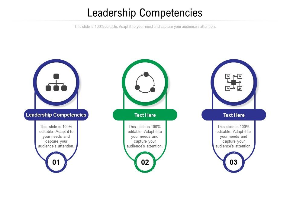 Leadership Competencies Ppt Powerpoint Presentation Styles Structure Cpb