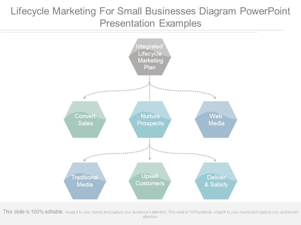 lifecycle_marketing_for_small_businesses_diagram_powerpoint_presentation_examples_Slide01