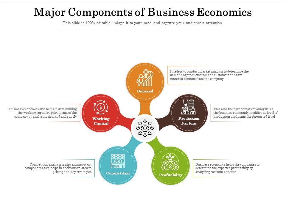 Major Components Of Business Economics