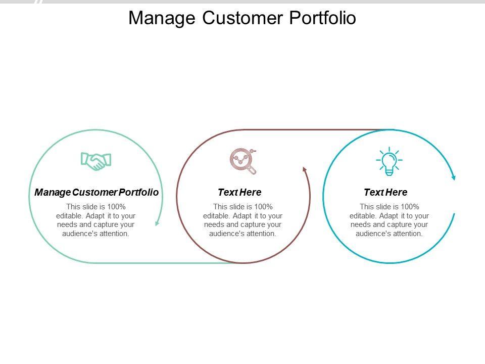 Manage Customer Portfolio Ppt Powerpoint Presentation File