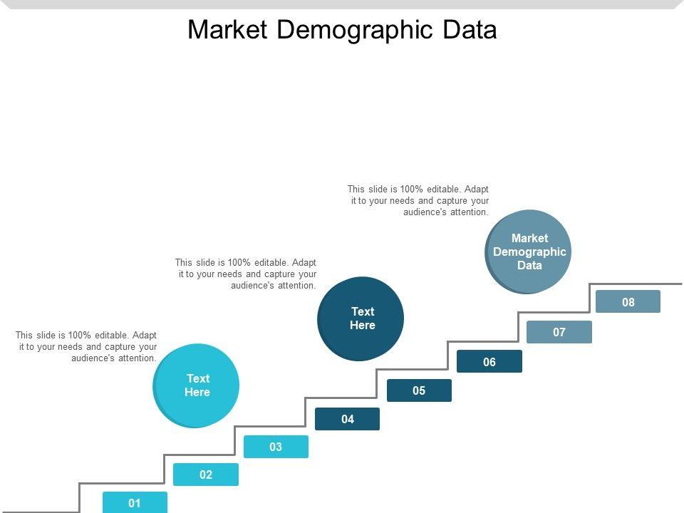 Market Demographic Data Ppt Powerpoint Presentation Styles Show Cpb