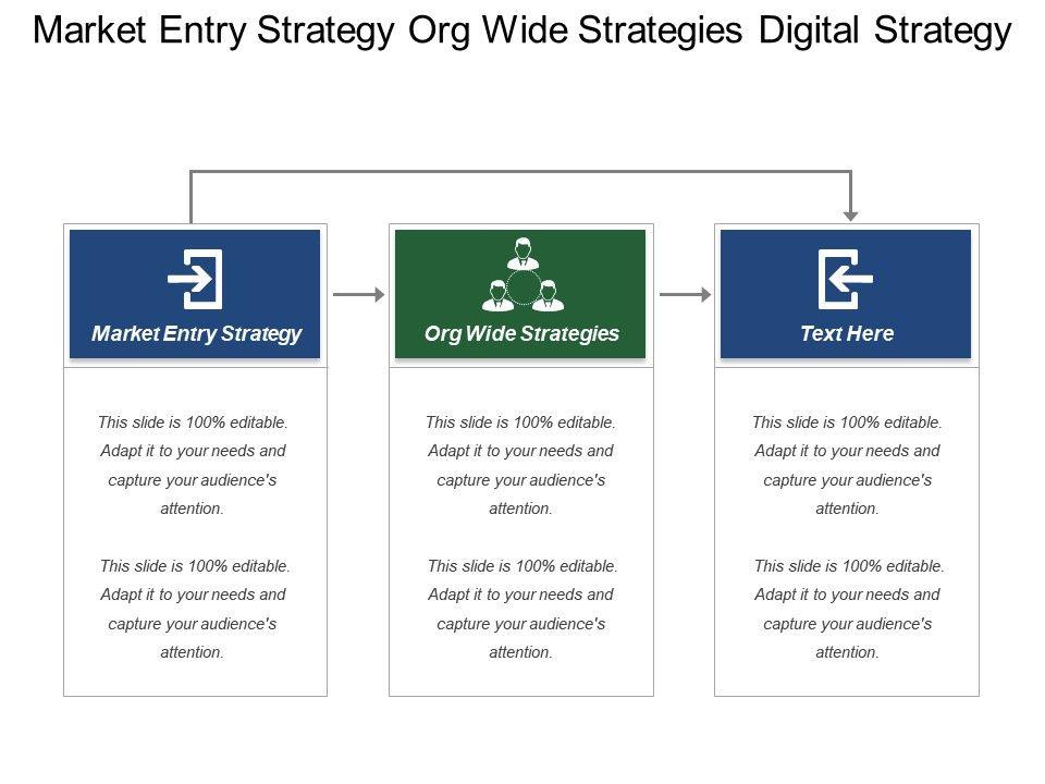 market_entry_strategy_org_wide_strategies_digital_strategy_Slide01