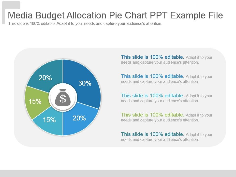 Media Budget Allocation Pie Chart Ppt Example File Presentation