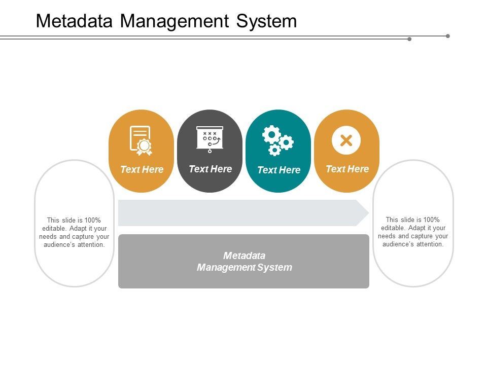 Metadata Management System Ppt Powerpoint Presentation Inspiration