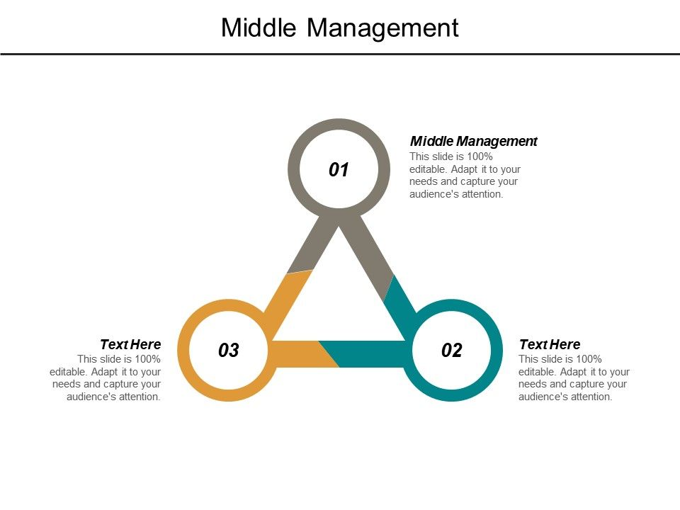 Middle Management Ppt Powerpoint Presentation Outline Microsoft Cpb