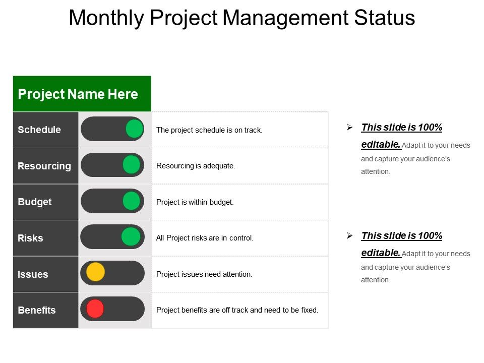 monthly project management status example of ppt powerpoint slide