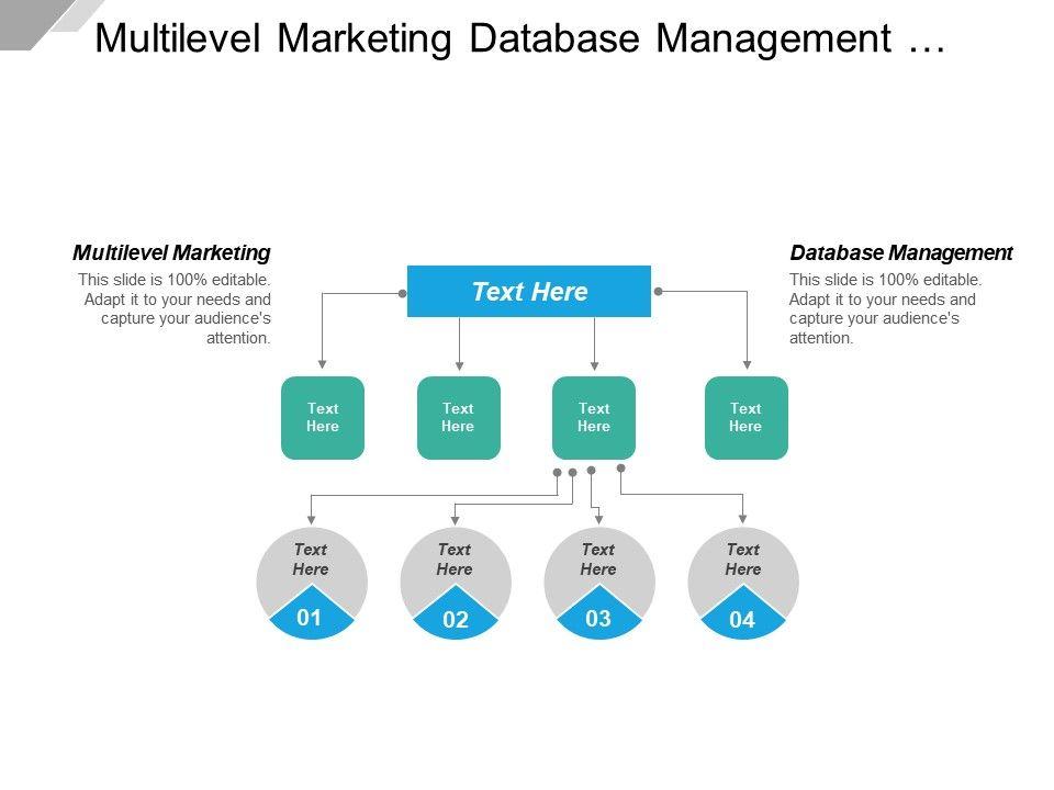 Multilevel Marketing Database Management Supply Chain And