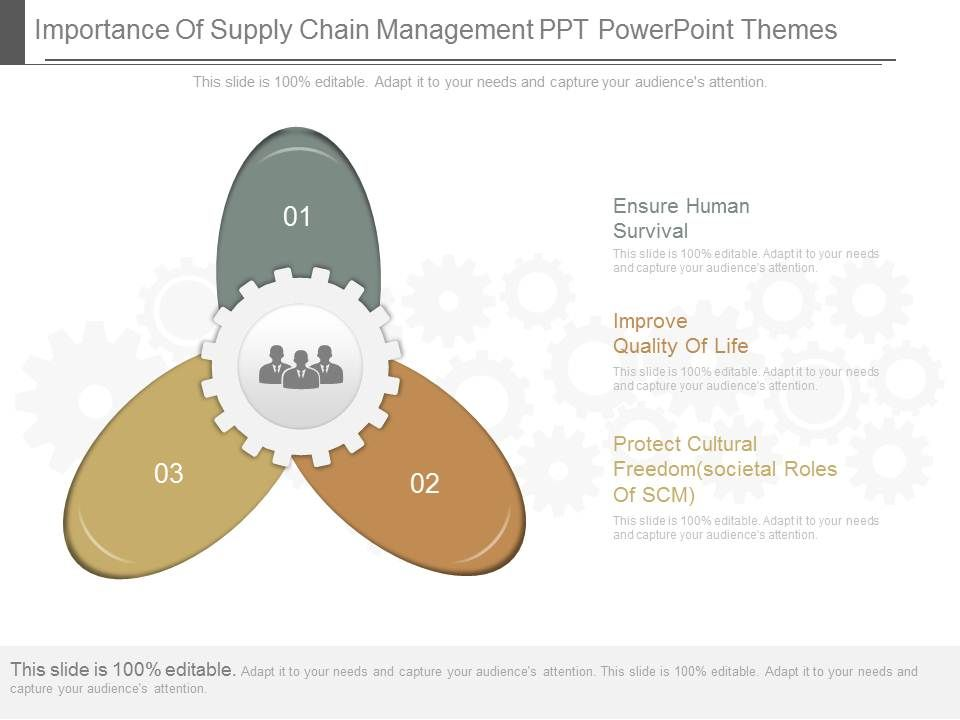 One Importance Of Supply Chain Management Ppt Powerpoint
