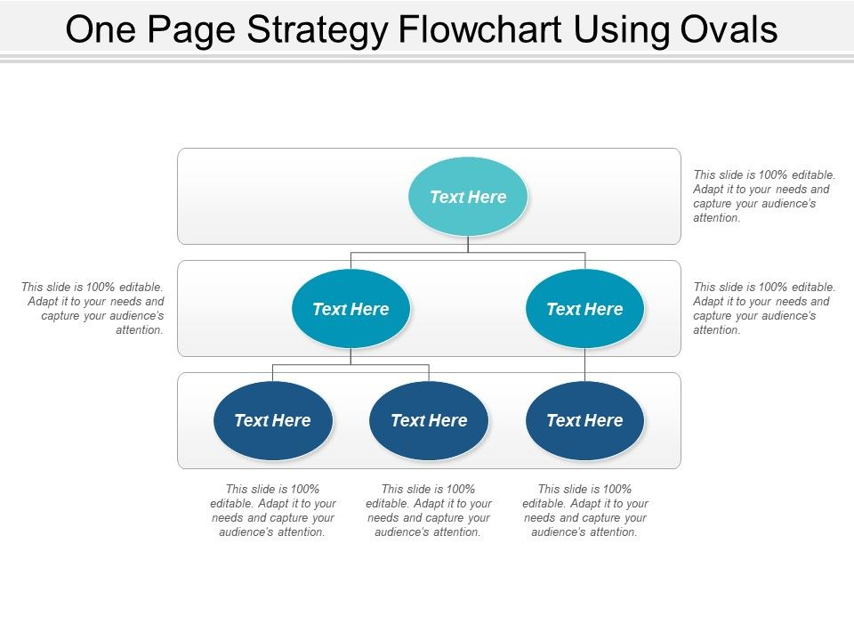 one_page_strategy_flowchart_using_ovals_Slide01