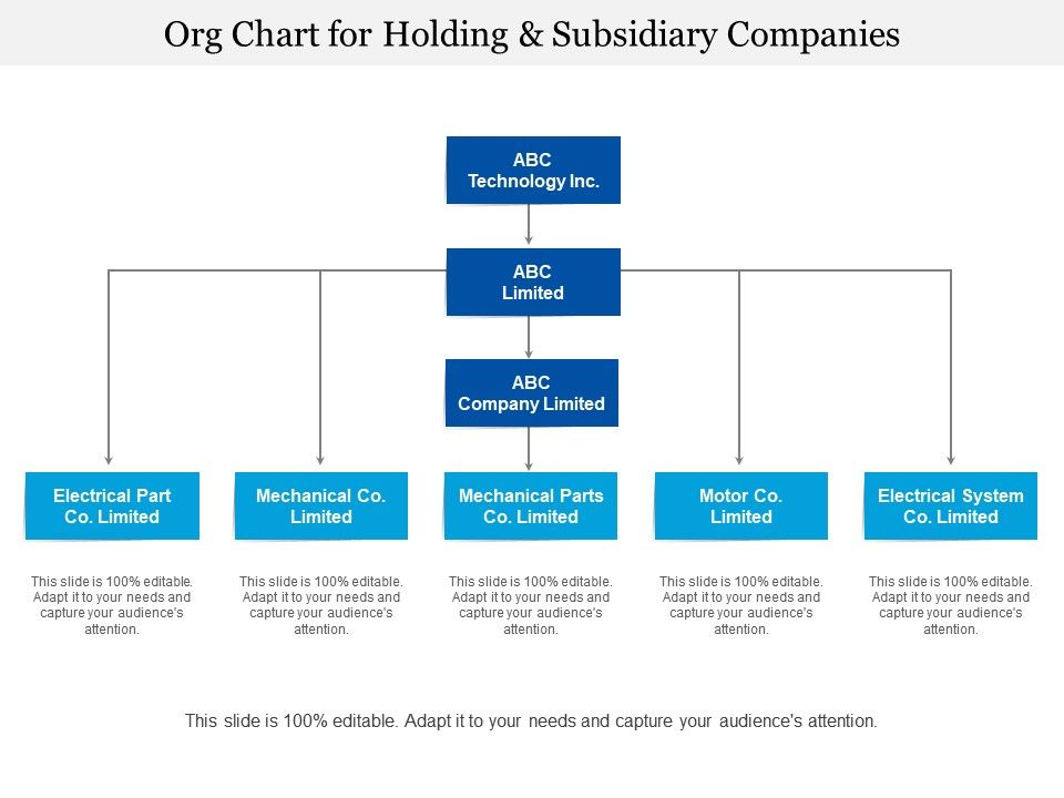 org_chart_for_holding_and_subsidiary_companies_Slide01