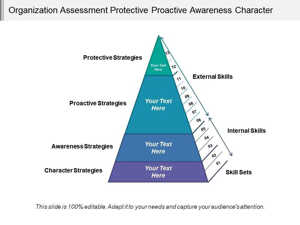 Organization Assessment Protective Proactive Awareness Character