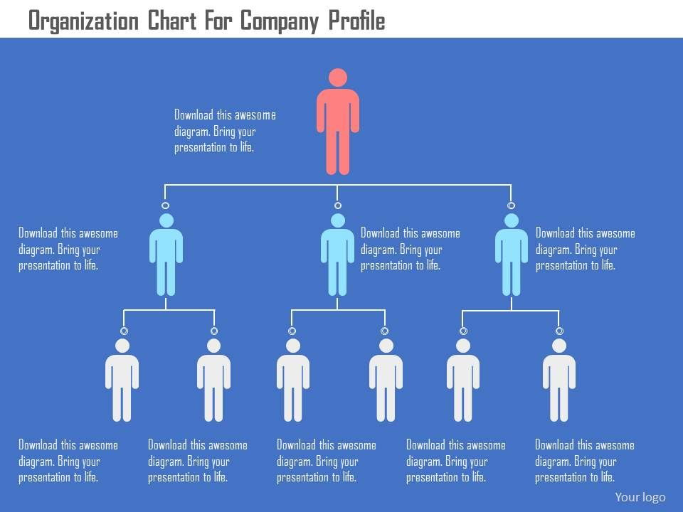 organization chart for company profile flat powerpoint design, Presentation templates