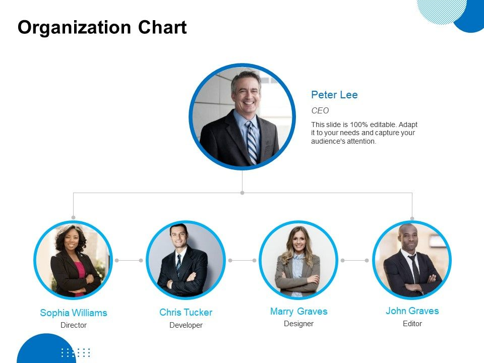 Organization Chart Ppt Powerpoint Presentation Pictures Outfit