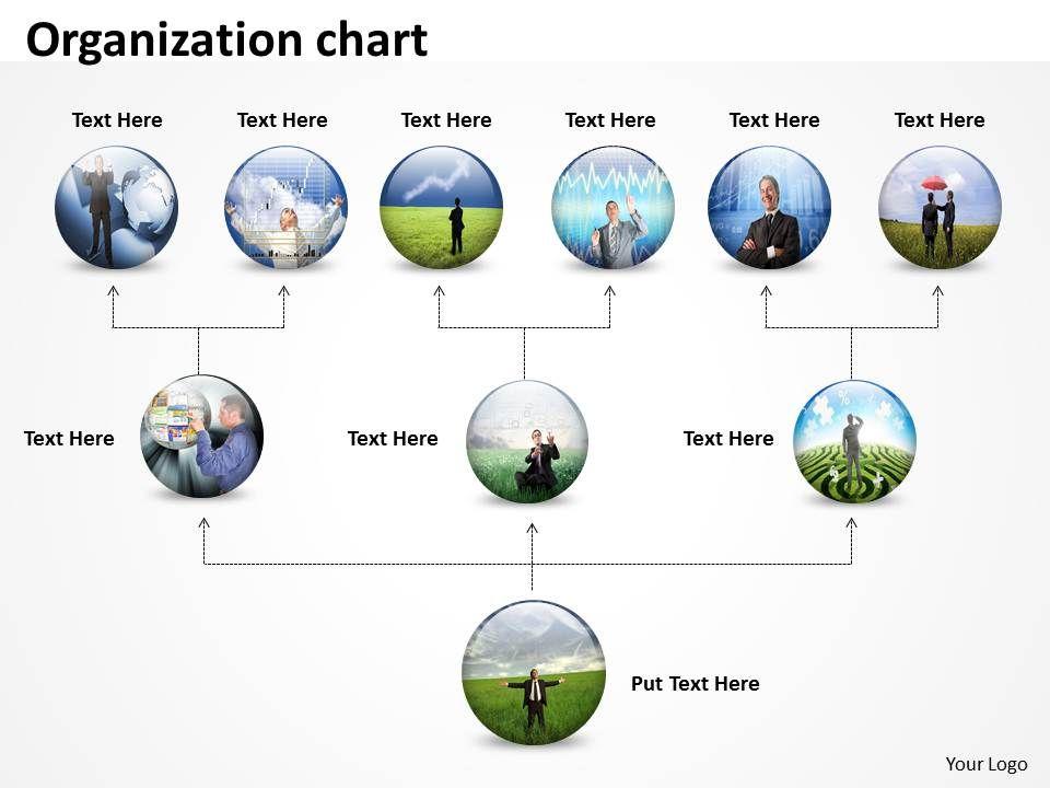 organization_chart_round_diagram_4_Slide01