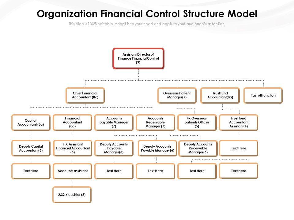 Organization Financial Control Structure Model