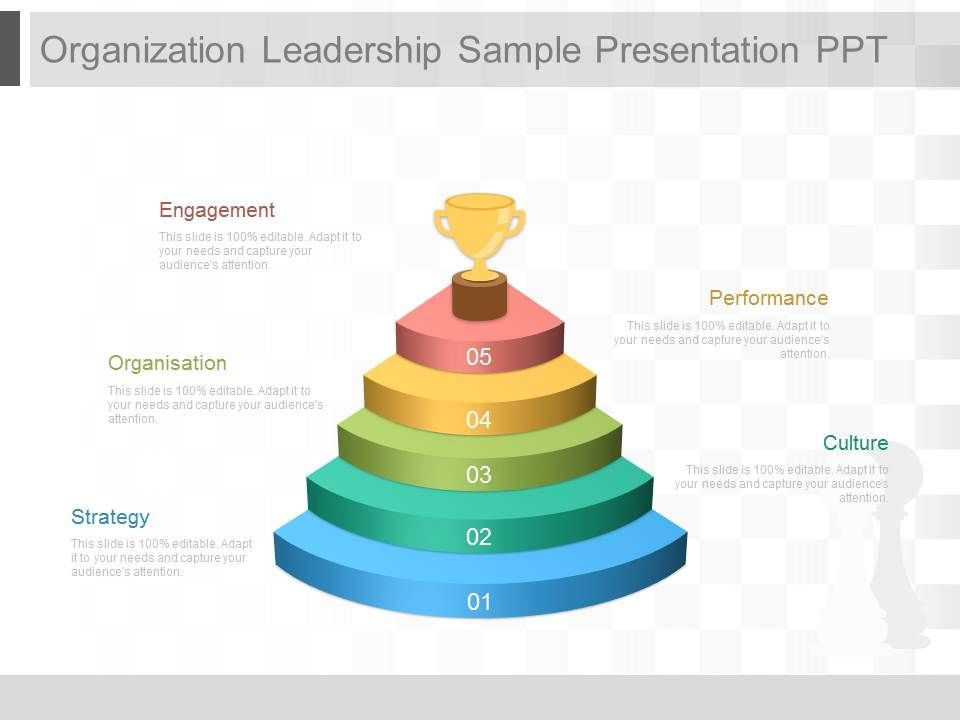organization_leadership_sample_presentation_ppt_Slide01