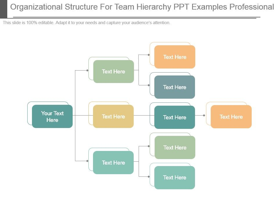 Organizational Structure For Team Hierarchy Ppt Examples ...