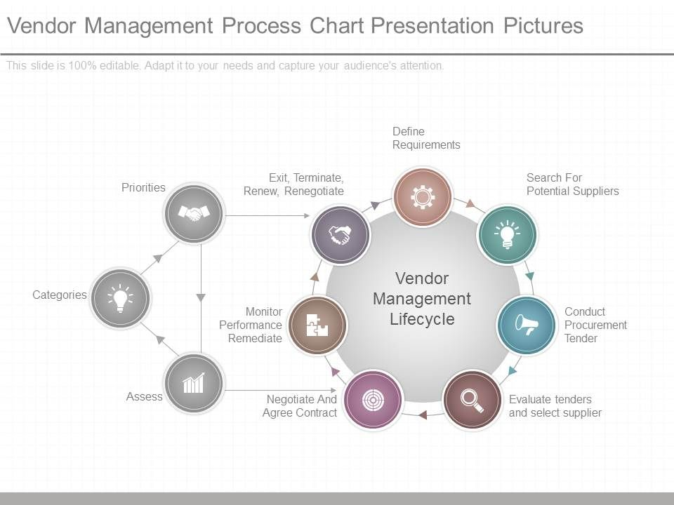 original_vendor_management_process_chart_presentation_pictures_Slide01