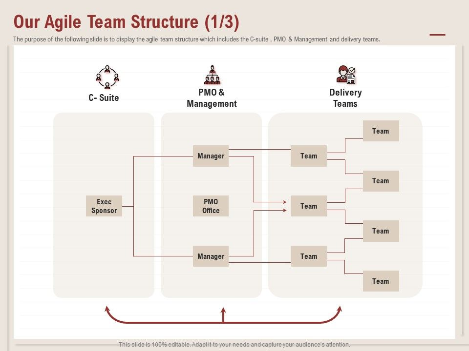 Our Agile Team Structure Exec Sponsor Ppt Powerpoint Presentation Infographics Tips