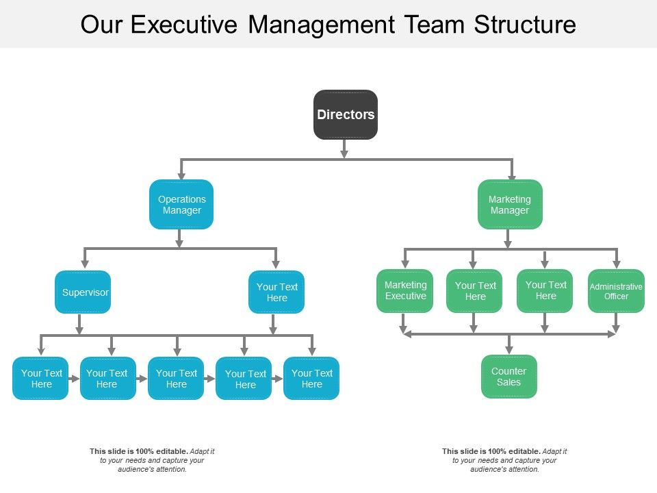 Our Executive Management Team Structure | PowerPoint Slide