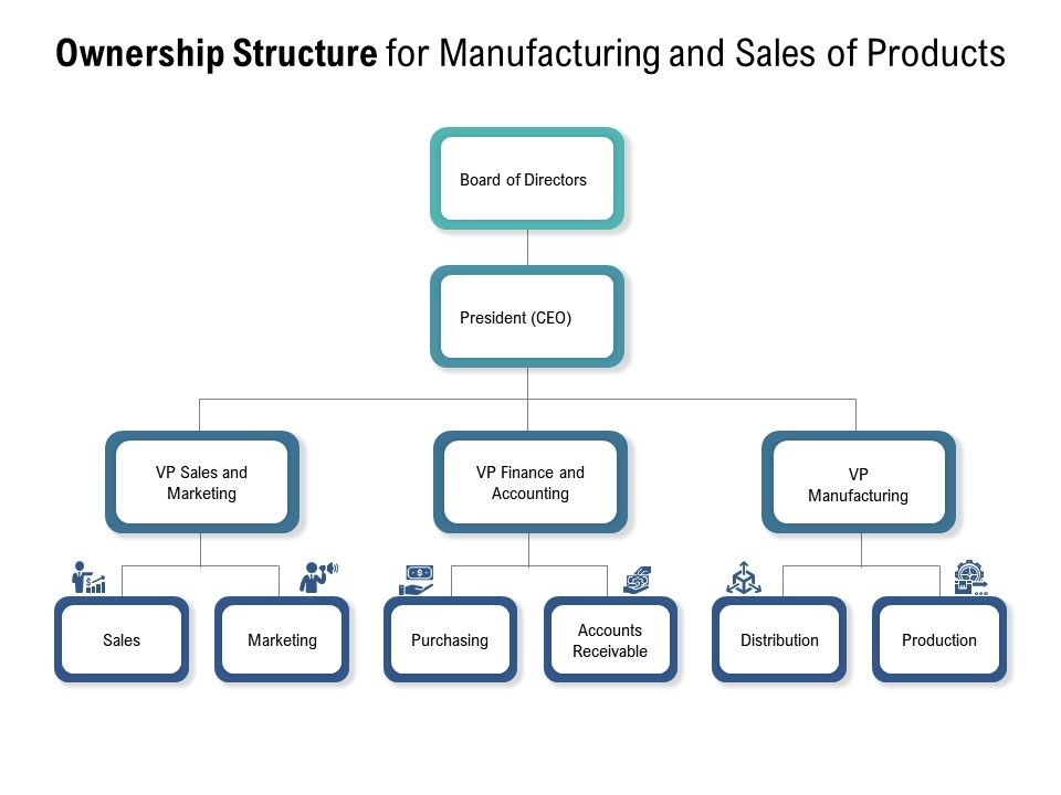 Ownership Structure For Manufacturing And Sales Of Products