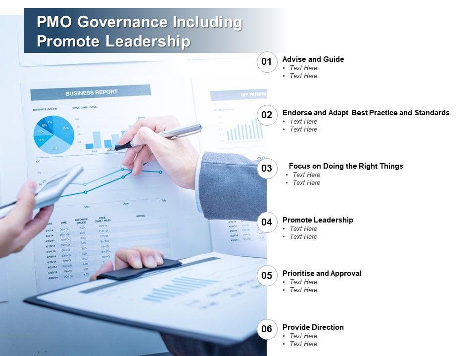 PMO Governance Including Promote Leadership