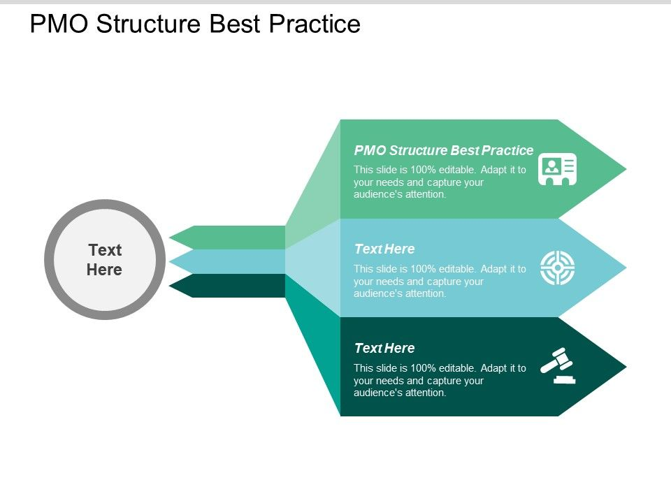 pmo_structure_best_practice_ppt_powerpoint_presentation_gallery_outfit_cpb_Slide01