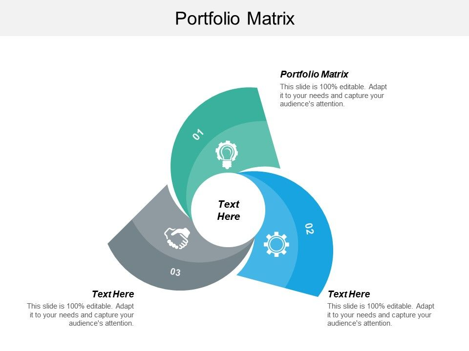 Portfolio Matrix Ppt Powerpoint Presentation Icon Slide Download Cpb