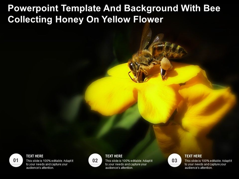 Powerpoint Template And Background With Bee Collecting Honey On Yellow Flower