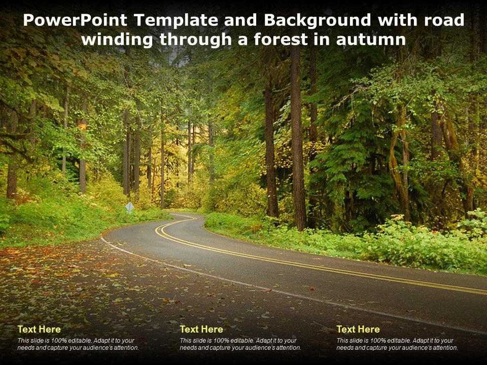 Powerpoint Template And Background With Road Winding Through A Forest In Autumn