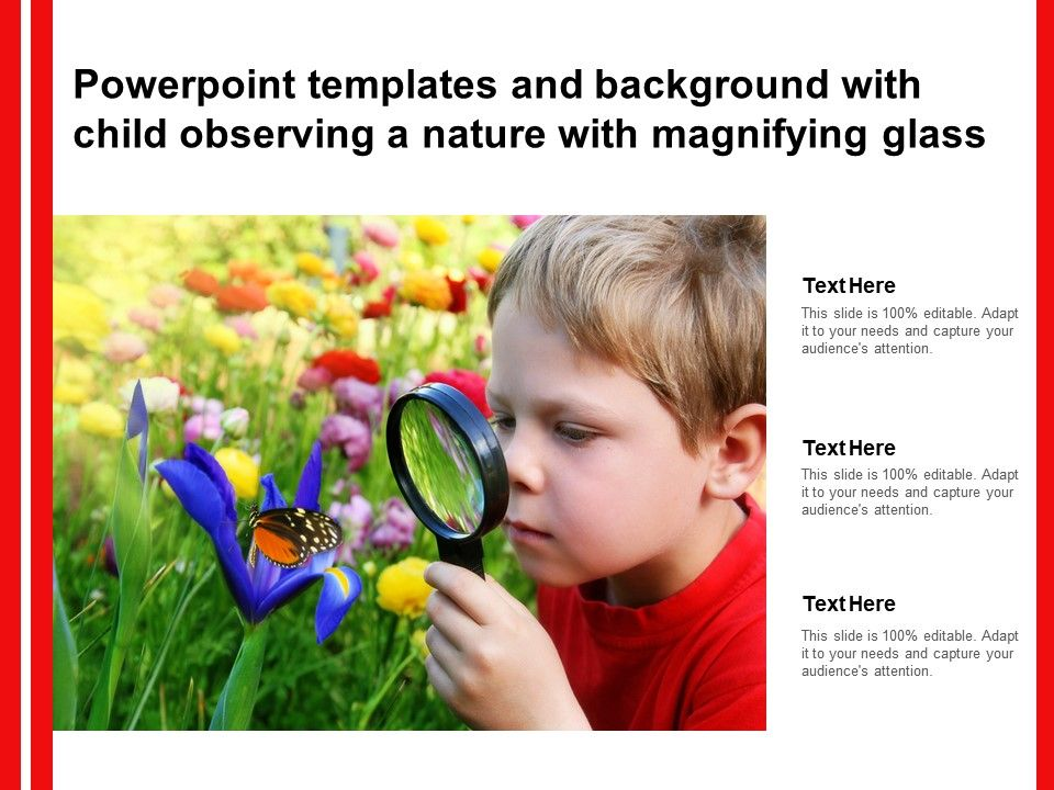 Powerpoint Templates And Background With Child Observing A Nature With Magnifying Glass