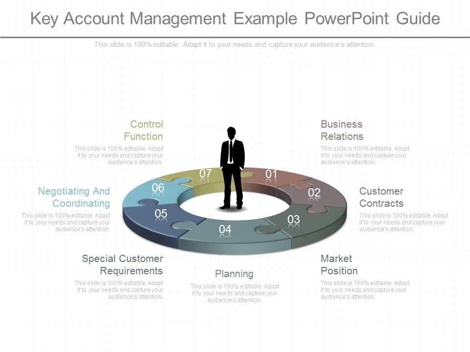 ppt_key_account_management_example_powerpoint_guide_Slide01