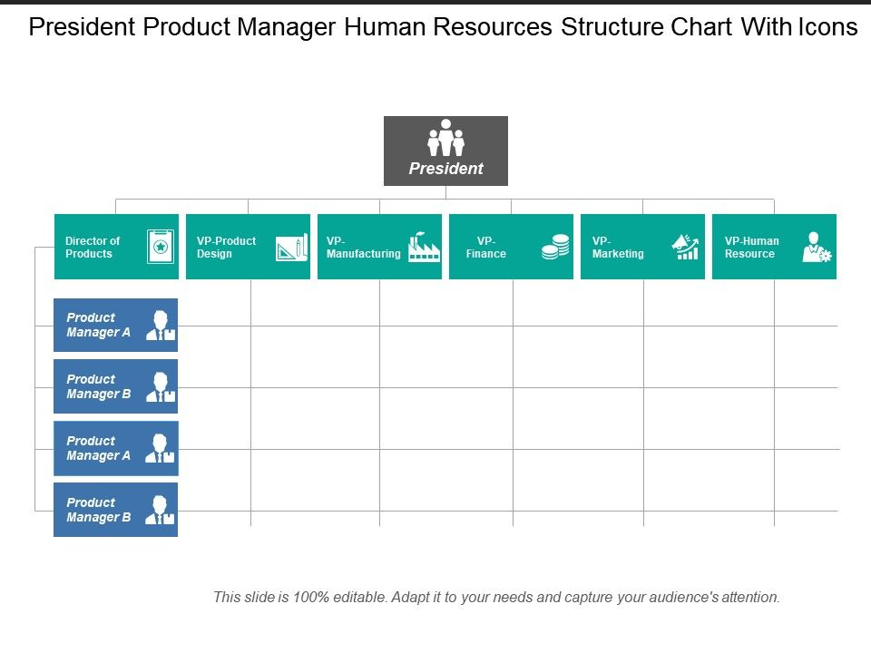 president_product_manager_human_resources_structure_chart_with_icons_Slide01