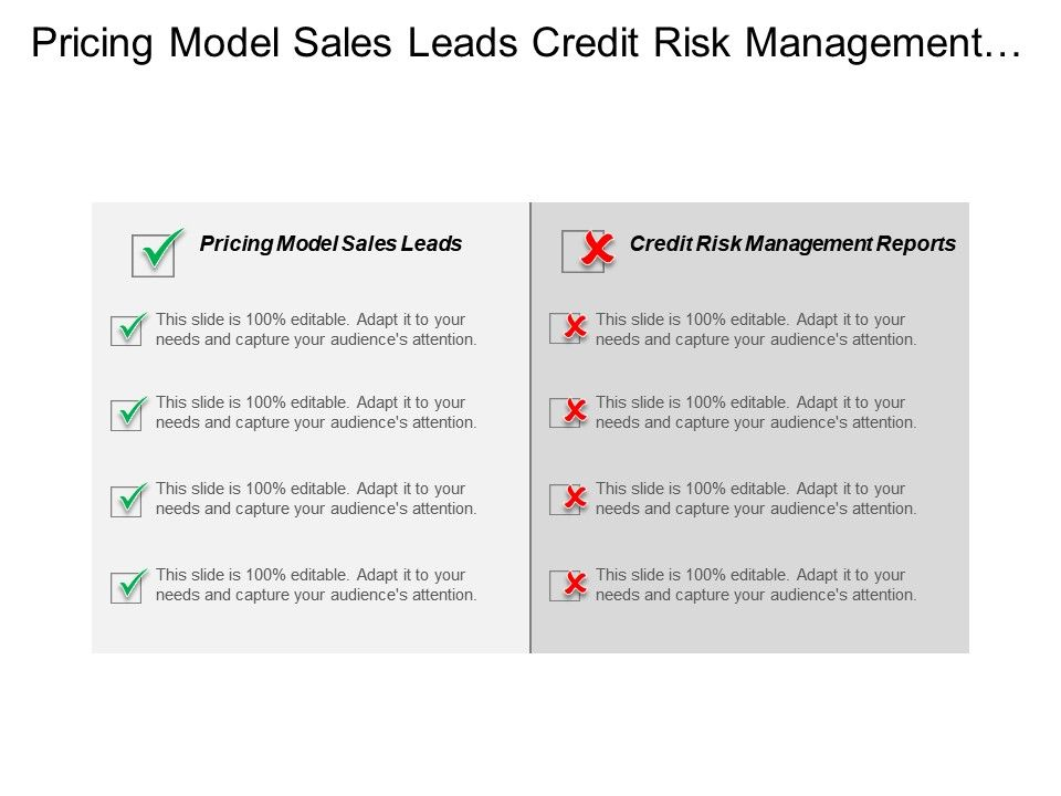 pricing_model_sales_leads_credit_risk_management_reports_cpb_Slide01